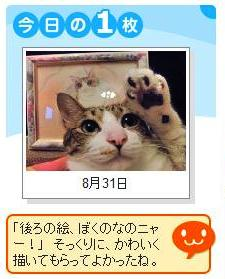 Yahoo!ペット今日の1枚猫 ぽー編。_a0143140_22583512.jpg