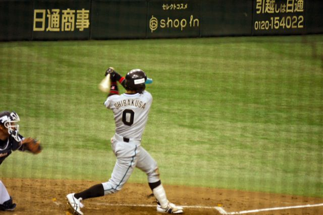 都市対抗野球の応援in東京ドーム_b0175688_2192158.jpg