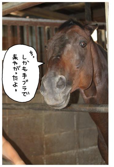 久し振りの再会_a0093189_2215754.jpg