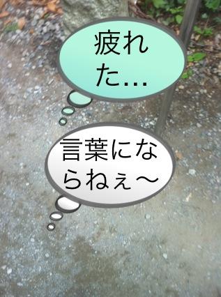 北斗の件 ~パワースポット 高尾山編~_f0236990_1511281.jpg