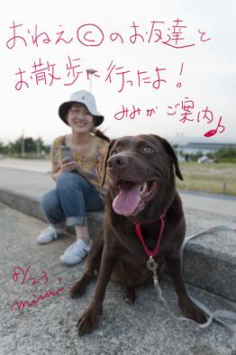 mimiが芦屋浜をご案内♪_a0066192_16512552.jpg