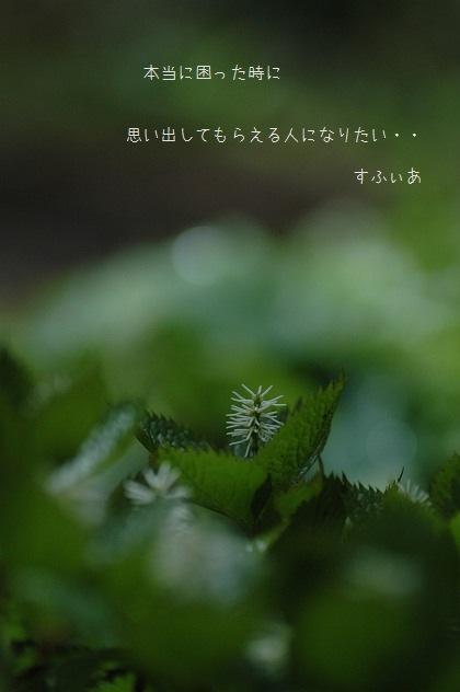 b0152416_1955523.jpg