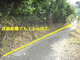 f0031037_2264959.jpg