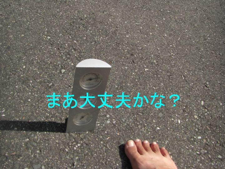 f0053952_1250495.jpg
