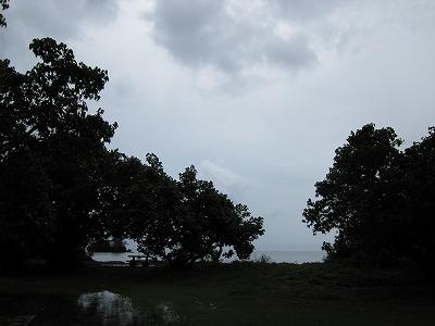今日は1日雨でした。_d0158177_21195791.jpg