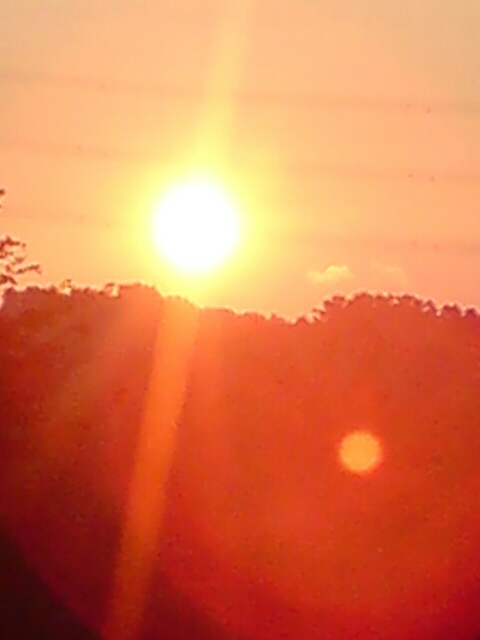 新柳の夕日。_d0182179_17571964.jpg