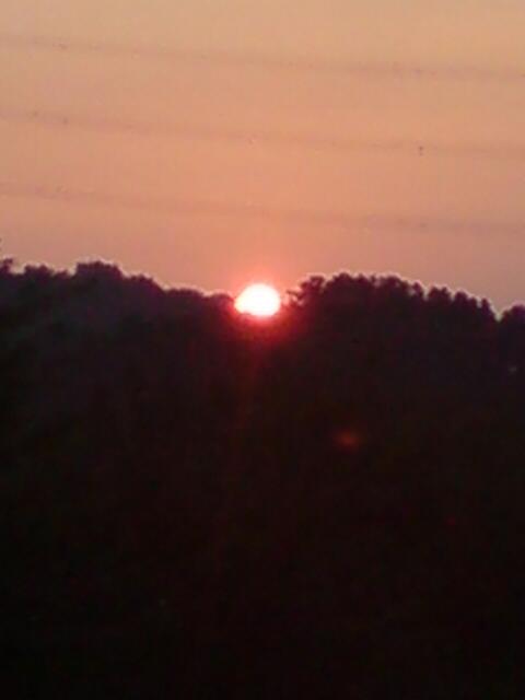 新柳の夕日。_d0182179_1861255.jpg