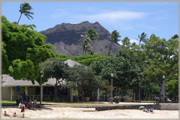 ハワイ旅行記 17_b0093088_70816.jpg