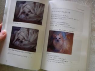 ついに!!「ら~ちゃんママ・・・」書籍化!?_c0160092_215576.jpg