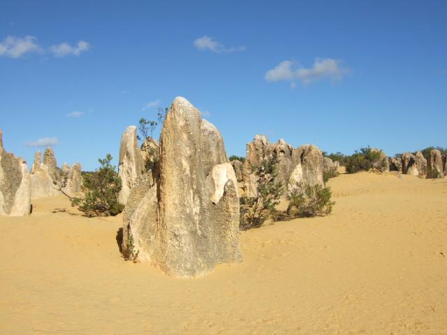 オーストラリアの旅 No.8  -パース近郊・ピナクルス観光ー_e0024094_11343460.jpg