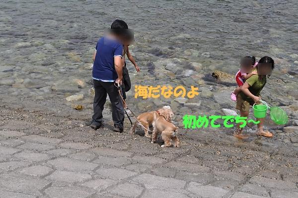 b0067012_10355759.jpg