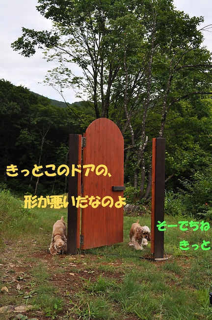 b0067012_1414760.jpg