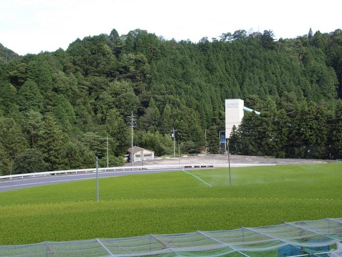 田んぼの風景_c0116915_025736.jpg