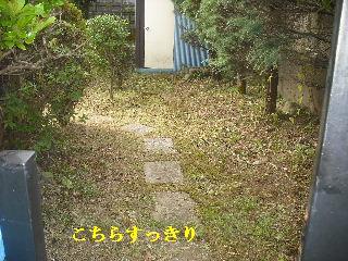 f0031037_18481841.jpg