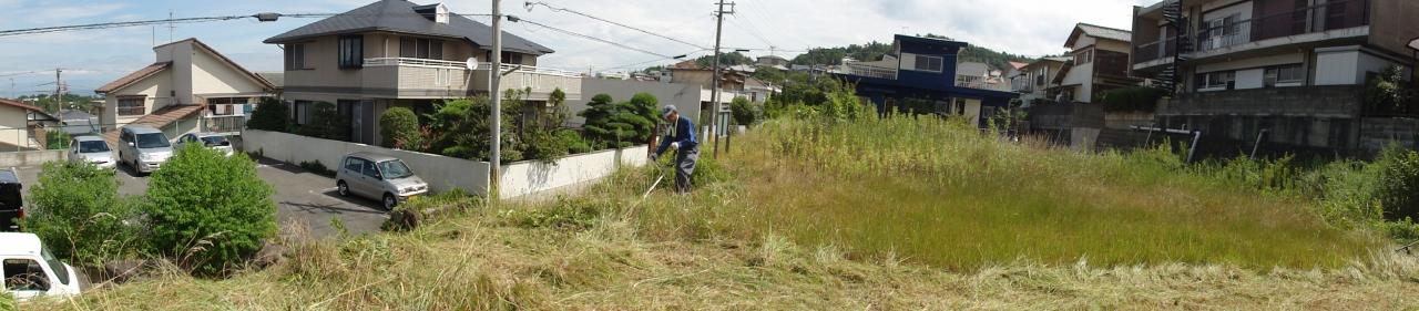草刈り大好き? in みさき公園団地_c0108460_159029.jpg
