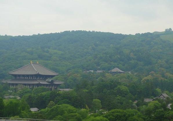 <2010年6月>伊勢路・奈良の旅(その3):「奈良・西ノ京の国宝寺」_c0119160_20524912.jpg
