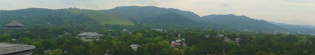 <2010年6月>伊勢路・奈良の旅(その3):「奈良・西ノ京の国宝寺」_c0119160_21103395.jpg