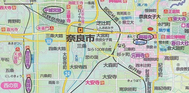 <2010年6月>伊勢路・奈良の旅(その3):「奈良・西ノ京の国宝寺」_c0119160_21274129.jpg