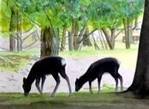 <2010年6月>伊勢路・奈良の旅(その3):「奈良・西ノ京の国宝寺」_c0119160_213944.jpg
