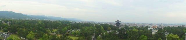 <2010年6月>伊勢路・奈良の旅(その3):「奈良・西ノ京の国宝寺」_c0119160_2193558.jpg