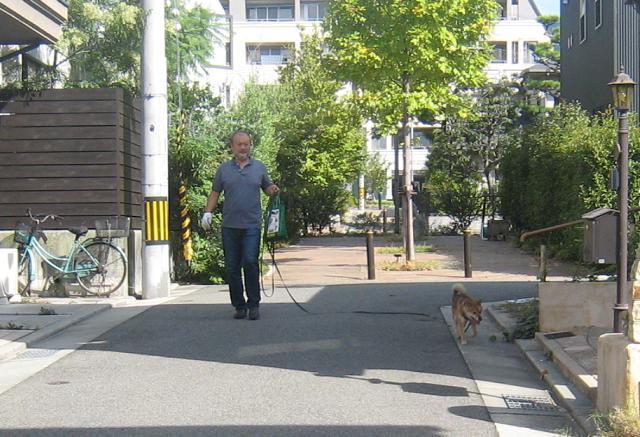 ポポンタ、朝の散歩_f0205367_1913239.jpg