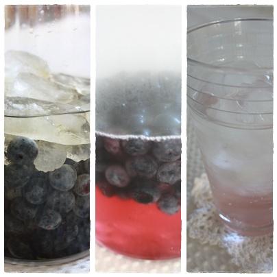 飲む酢~ブルーベリー酢を作りました。_c0141025_19242124.jpg
