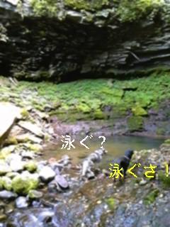 f0148927_19335574.jpg