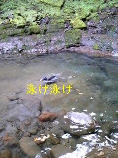 f0148927_19375384.jpg