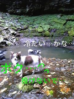 初めての滝へ_f0148927_19395823.jpg