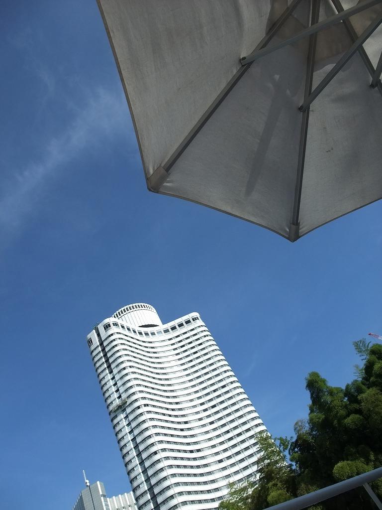 Tokyo Resort_f0050534_7334337.jpg