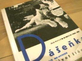 ダーシェンカ:本と切手_b0087556_026083.jpg