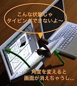 b0141865_1072959.jpg