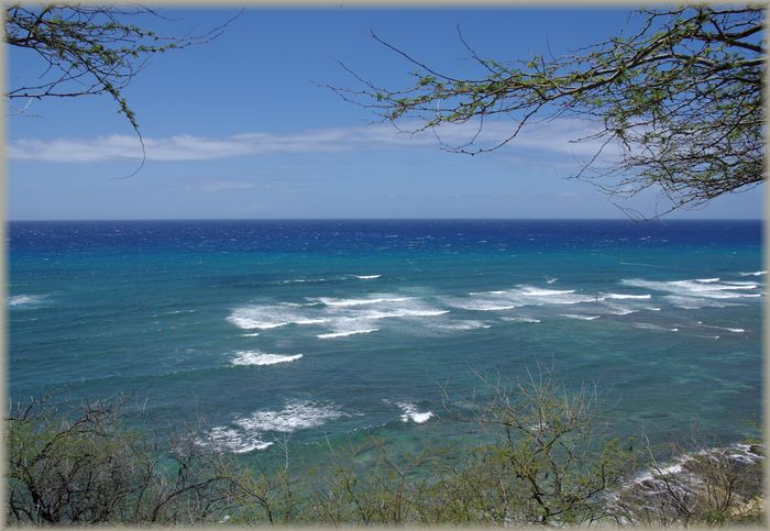 ハワイ旅行記 19_b0093088_7164185.jpg