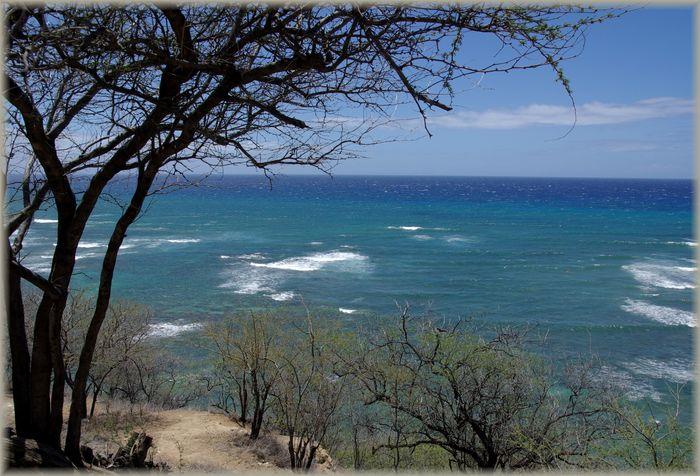 ハワイ旅行記 19_b0093088_717542.jpg