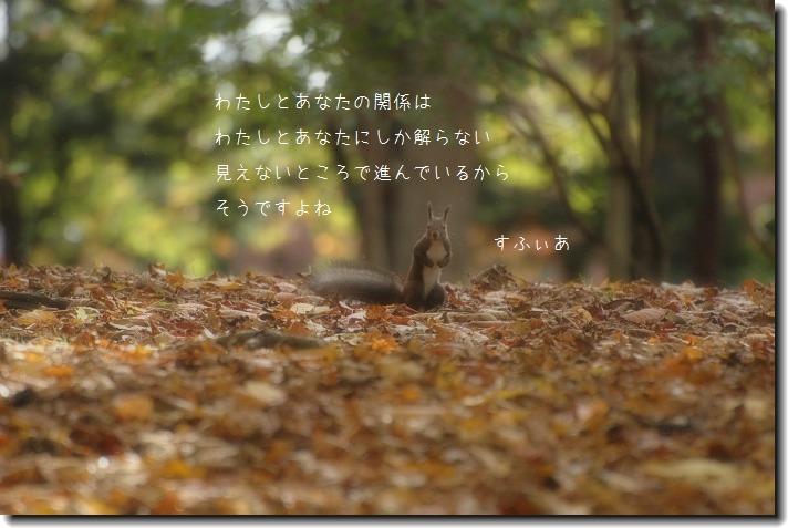 b0152416_1525085.jpg
