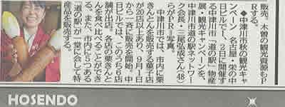 中津川観光PR各紙_d0063218_10152273.jpg