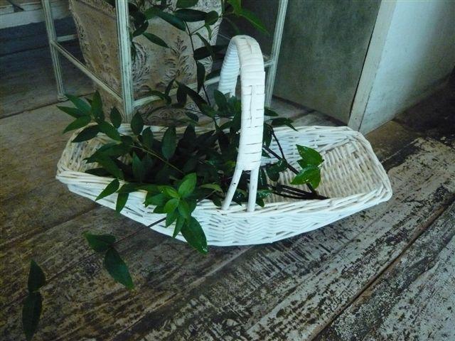 たまには花屋さんらしい画像を・・・・フラワーバスケット_b0137969_1737757.jpg
