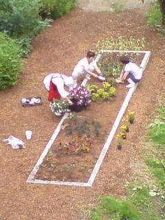 自慢の花壇です。_d0182179_124449.jpg