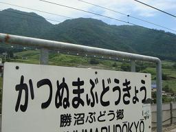 勝沼~石和~甲府の旅☆1日目_a0102784_1712686.jpg