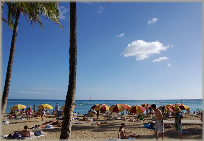 ハワイ旅行記 20_b0093088_658397.jpg