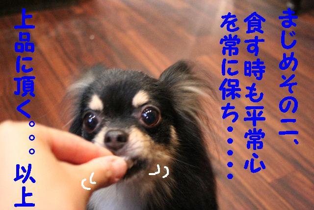 こんにちわ!!_b0130018_10481367.jpg