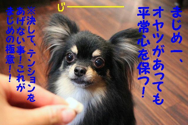 こんにちわ!!_b0130018_1048844.jpg