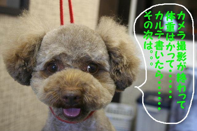 こんにちわ!!_b0130018_10503767.jpg
