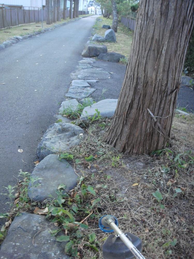 駒形神社例祭_c0111229_1943346.jpg