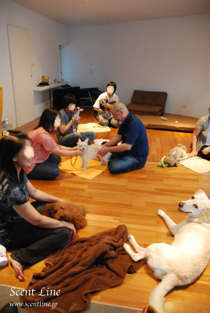 「愛犬の為の整体教室」第1回の模様_c0099133_1073731.jpg