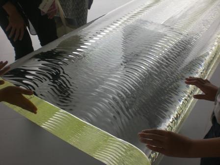 ネイチャー・センス展 in 森美術館_f0083294_2244714.jpg