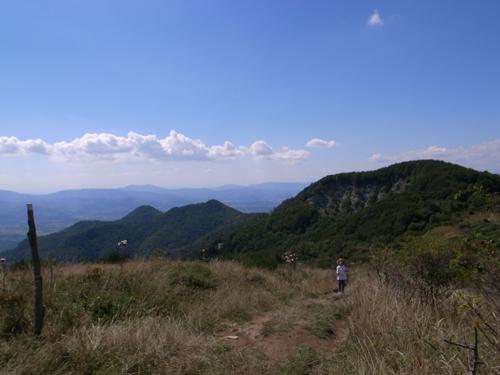 楽しい土曜日の山登りでした_f0106597_23394499.jpg