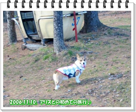 f0182121_951557.jpg