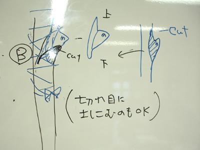 芽つぎ講習_a0094959_2093821.jpg