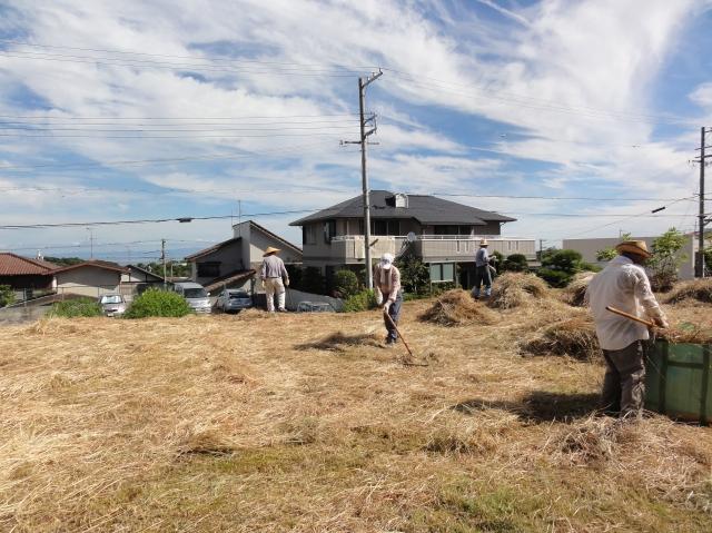 みさき公園団地:刈り取った草の片付け②_c0108460_13462588.jpg
